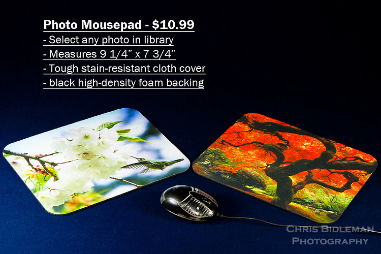 "Photo Mousepad - order with any photo from the Chris Bidleman Photography collection.  Measure 9 1/4"" x 7 3/4"" in size.<br /> <br /> Create your own custom mousepad with any photo in Chris Bidleman Photography library.  Printed on a durable cloth cover, your custom mousepad adds an unique look to home or office.  The no-slip back keeps the pad in place, allowing for smooth mouse movement across the cover.  Makes a thoughtful office gift.<br /> <br /> To order, select your photo from the library, pick the ""buy"" button, and go to the ""products"" tab to select mousepad."