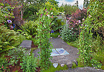 Vashon-Maury Island, WA: Climbing sweet peas at the entrance to a secluded garden with ferns, sedum, barberry, ninebark and persecaria