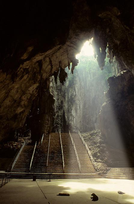 Cave,Malysia