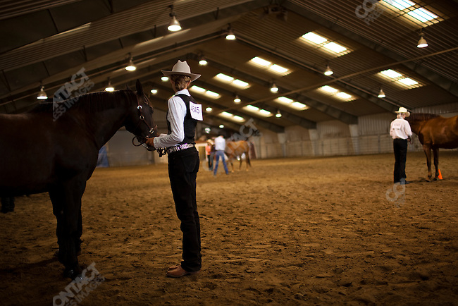 Competitors show their horses at the Montana Fair.  Bilings, Montana, USA, August 7, 2009
