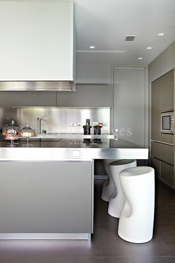 contemporary inox kitchen
