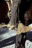 Southern Chile. Traditional old-fashioned carved wooden stirrups, spurs and embossed leather leg guard worn by a gaucho.