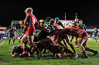 Jordan Crane of Leicester Tigers scores a try in the corner from a driving maul. European Rugby Champions Cup match, between Leicester Tigers and the Scarlets on January 16, 2015 at Welford Road in Leicester, England. Photo by: Patrick Khachfe / JMP