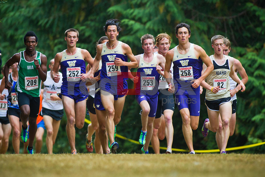 Taylor Carlson, Cameron Quackenbush, Mike Miller, O'Donoghue-McDonald (258) on his way to winning the Sundodger Invitational.----Washington Huskies men's and women's cross country teams compete in the Sundodger Invitational in West Seattle's LIncoln Park  on Saturday, September 17, 2011. (Photo by Dan DeLong/Red Box Pictures)