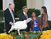 United States President Barack Obama participates in the annual White House ritual of granting a Presidential Pardon to the National Thanksgiving Turkey in the Rose Garden of the White House in Washington, D.C. on Wednesday, November 21, 2012.  This year's turkey, Cobbler, is 19-weeks old and weighs 40 pounds (18kg).  Cobbler, and his alternate, Gobbler, were named from submissions from elementary schools in Rockingham County, Virginia, where the turkeys were raised.  Following the pardoning ceremony, Cobbler and Gobbler will live out their lives at George Washington's Mount Vernon Estate and Gardens in Mount Vernon, Virginia.  From left to right: National Turkey Federation Chairman Steve Willardsen, President Obama, Sasha Obama, and Malia Obama..Credit: Ron Sachs / CNP