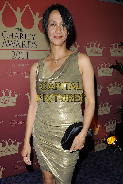 Monica Ali .At the Charity Awards 2011, Grosvenor House Hotel, Park Lane, London, England, UK, June 9th 2011..half length shiny sleeveless black clutch bag gold dress .CAP/CAN.©Can Nguyen/Capital Pictures.