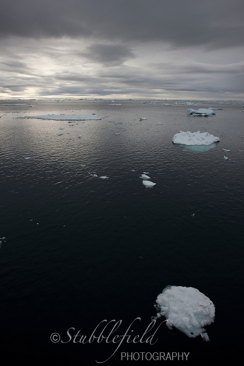 Ice floes off Paulet Island, Antarctica as seen from the Professor Multanovski.