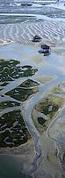 Europe/France/Aquitaine/33/Gironde: L'Ile aux oiseaux et ses cabanes tchanquées -réserve naturelle - vue aérienne