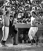 Oakland Athletics Gene Tenace gives the stand-up sign to Rich McKinney as he scores run. (1973 photo by Ron Riesterer)
