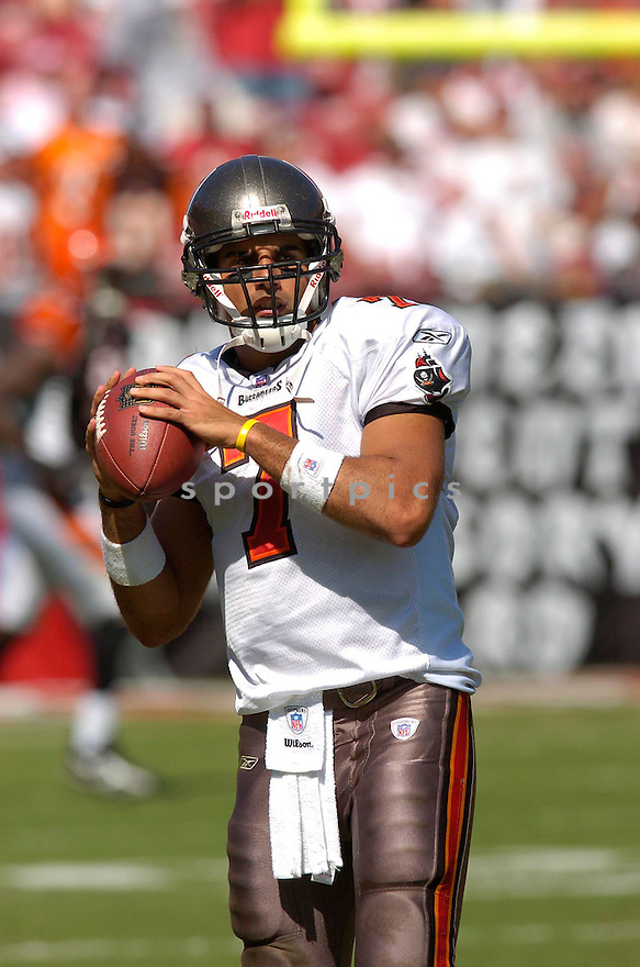 BRUCE GRADKOWSKI, of the Tampa Bay Buccaneers, in action against the Cincinnati Bengals on October 15, 2006 in Tampa Bay, FL...Buccaneers win 14-13..Chris Bernacchi / SportPics