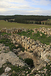 Israel, Shephelah, Burial cave in Hurvat Rimon, site of an ancient Jewish village
