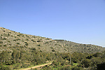 Mount Carmel, a view of Nahal Mearot Nature Reserve