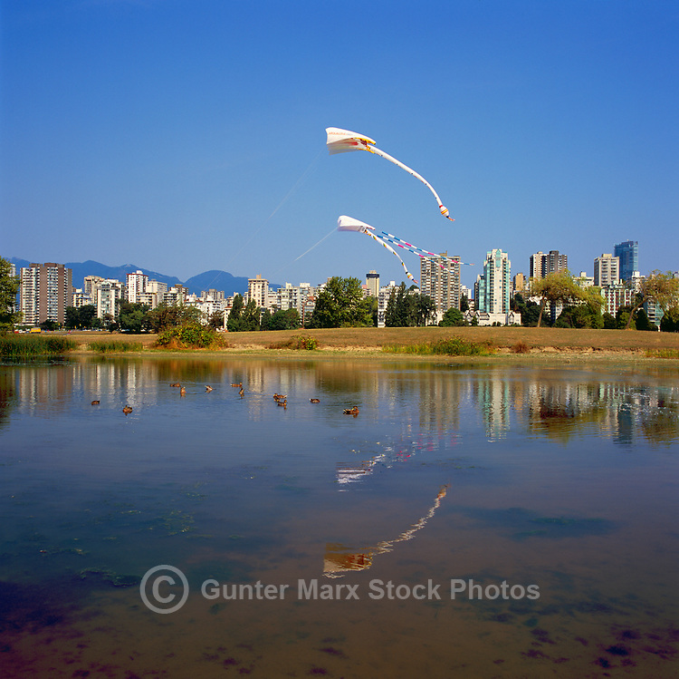 Vancouver, BC, British Columbia, Canada - Large Kites flying at Vanier Park, West End Skyline in background