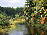 The Peshekee River During Autumn At Van Riper State Park. Upper Peninsula, Michigan, USA : Low Res File - 8X10 To 11X14 Or Smaller, Larger If Viewed From A Distance