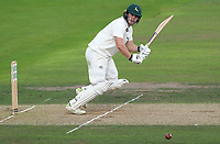 Ben Slater of Nottinghamshire in batting action during Nottinghamshire CCC vs Essex CCC, Specsavers County Championship Division 1 Cricket at Trent Bridge on 11th September 2018