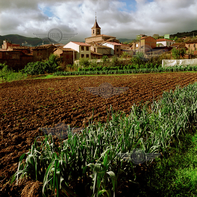 Agricultural land in the village.