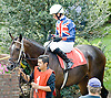 Mach Twelve  with Nicolai DeBoinville before The Gentleman International Fegentri Race at Delaware Park on 9/3/11