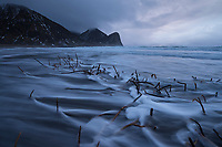 Tide flows across seaweed after winter storm at Unstad beach, Vestvågøy, Lofoten Islands, Norway
