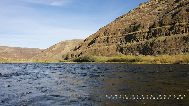 Cliffs and willow along the John Day River.