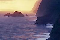 North Kohala Coast<br />   from Pololu Valley Lookout<br /> Island of Hawaii<br /> Hawaii