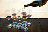 USA, Oregon, Willamette Valley, a woman pours glasses of the Brut Rose at Soter Winery, Carlton