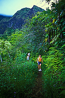EDITORIAL ONLY. Hiking on Maunawili trail, near Kailua, windward Oahu