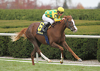 I O Ireland and Julien Leparoux win the 5th race, Allowance $52,000 for 2 year old fillies.  October 20, 2012.