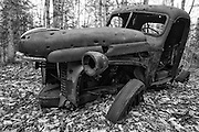 Abandoned 1940s rusted International Harvester pickup with bullet holes in forest near Elbow Pond in Woodstock, New Hampshire USA