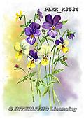 Kris, FLOWERS, BLUMEN, FLORES, paintings+++++,PLKKK3534,#f#, EVERYDAY