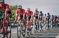Jasper Stuyven (BEL/Trek-Segafredo) escorted by teammates all day long<br /> <br /> 52nd GP Jef Scherens - Rondom Leuven 2018 (1.HC)<br /> 1 Day Race: Leuven to Leuven (186km/BEL)