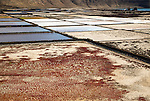 Traditional sea salt production, Salinas de Janubio, Lanzarote, Canary Islands, Spain