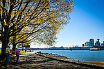 Panorama of trees along the waterfront, Stanley Park, Vancouver, B.C, Canada on a sunny day, early summer. Tourists taking pictures of the downtown skyline fronted by cruise ships.
