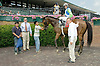 Airdrop winning at Delaware Park on 7/23/12
