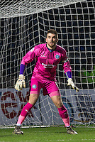 Goalkeeper Matt Ingram of Wycombe Wanderers during the Sky Bet League 2 match between Wycombe Wanderers and Crawley Town at Adams Park, High Wycombe, England on 28 December 2015. Photo by Andy Rowland / PRiME Media Images