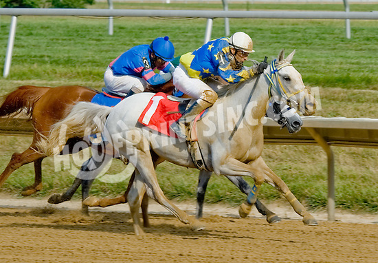 Chiquita Rose winning at Delaware Park on 7/11/12