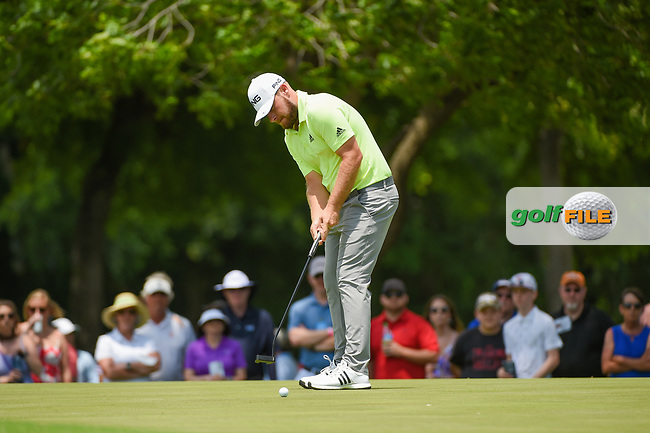 Tyrrell Hatton (ENG) watches his putt on 2 during round 3 of the 2019 Charles Schwab Challenge, Colonial Country Club, Ft. Worth, Texas,  USA. 5/25/2019.<br /> Picture: Golffile | Ken Murray<br /> <br /> All photo usage must carry mandatory copyright credit (© Golffile | Ken Murray)
