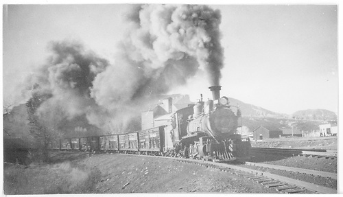 RGS #20 bringing in the last train of sheep into Durango before RGS abandonment.<br /> RGS  Durango, CO  Taken by Arend, Lad G. - 1950