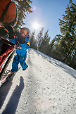 USA, Oregon, Bend, a young boy stands with the musher on the footboards while being pulled around Mt. Bachelor by the sled dogs