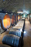 Oak barrel aging and fermentation cellar. The Periquita cellar. JM Jose Maria da Fonseca, Azeitao, Setubal, Portugal