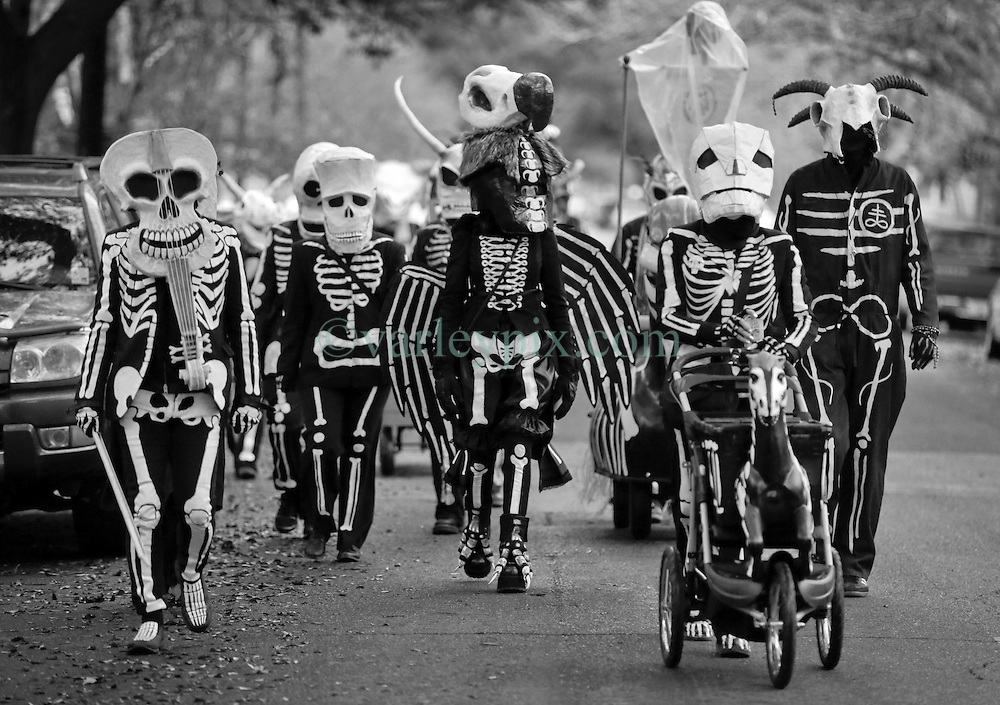 Image result for Mardi Gras skeleton krewe