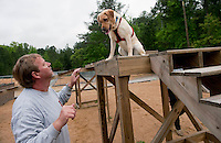"UNITED STATES - APRIL 6: Keith Turner, the supervisor of physical conditioning at the training center, and Faith run through one of the obstacle courses. The trained detector dogs can respond to a variety of hand signals and voice commands, like hunting dogs...Turner noted that dogs that make the cut for the elite program, Vapor Wake, are like ""the Michael Jordans of the detector world."""