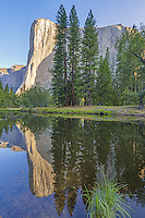 Morning Reflections, El Cap