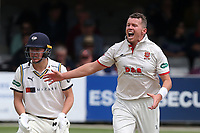 Peter Siddle of Essex appeals for a wicket during Essex CCC vs Yorkshire CCC, Specsavers County Championship Division 1 Cricket at The Cloudfm County Ground on 7th July 2019