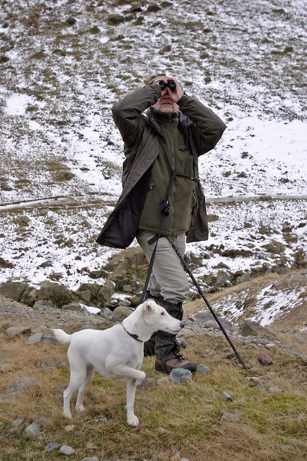 Glenridding, Cumbria, England, 22/12/2003..The Ullswater Hunt fox-hunting in what may be the last legal hunting season in the UK, as Parliament moves to ban hunting with dogs. The Ullswater hunt on foot in the Cumbrian Fells led by Huntsman John Harrison.