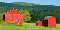 Farms of the Berkshires