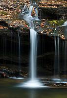 Waterfalls on Carrick Creek