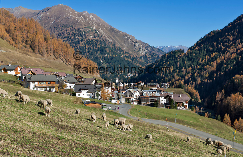 Schweiz, Graubuenden, Unterengadin, Herbstlandschaft im Zollausschlussgebiet Samnaun, Ortsteile Laret und Compatsch | Switzerland, Graubuenden, Lower Engadin, autumn scenery at customs enclave Samnaun, districts Laret and Compatsch