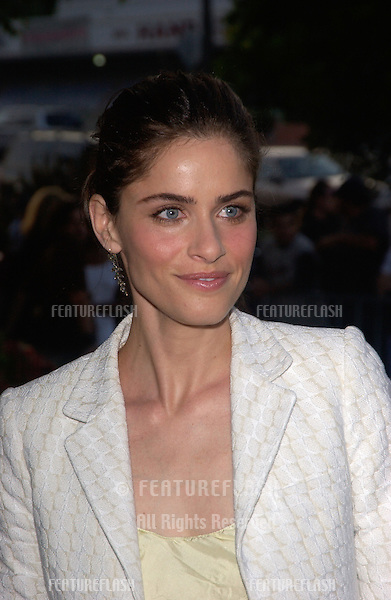 Actress AMANDA PEET at the Los Angeles premiere of We Don't Live Here Anymore..August 5, 2004