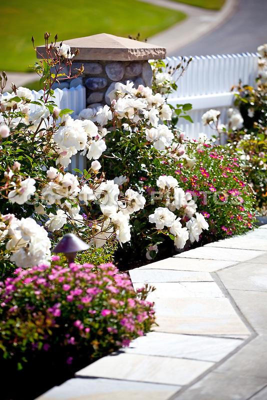 California Home Landscape Design