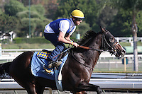Title Contender for trainer Bob Baffert at Santa Anita Park in Arcadia California